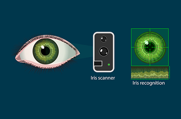 WHAT ARE THE TYPICAL APPLICATIONS OF RETINA SCAN